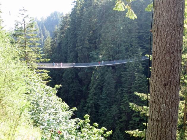 Capilani Suspension Bridge