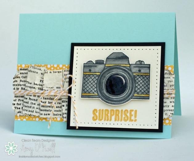 Surprise Snapshot