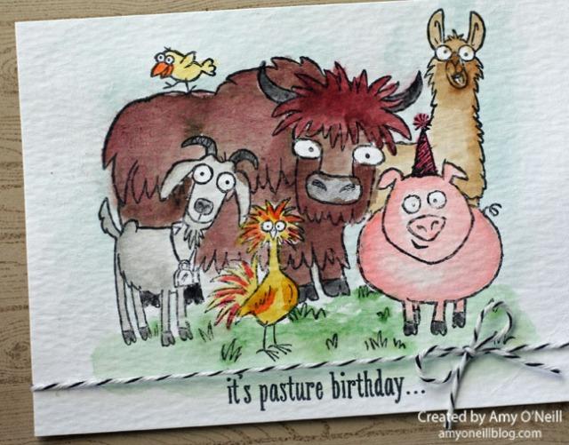 Pasture Birthday Close Up