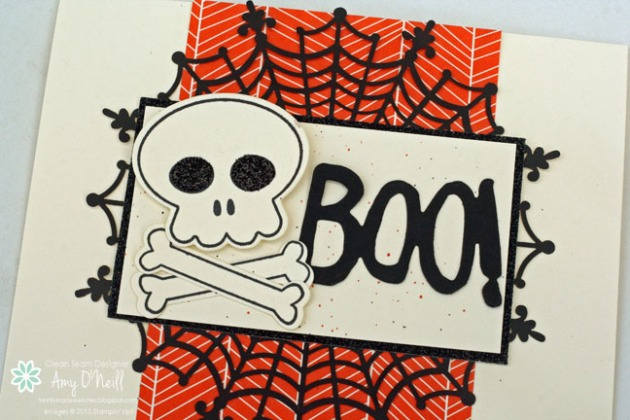 Skull and Cross Bones Close Up
