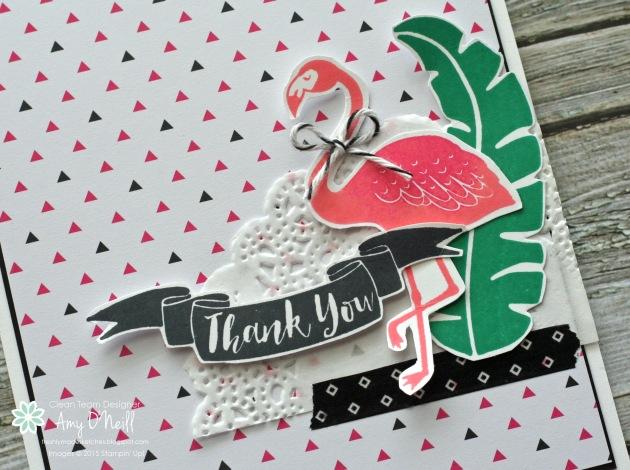 Flamingo Paradise Close Up
