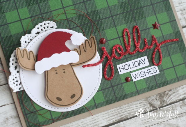 jolly-moose-close-up